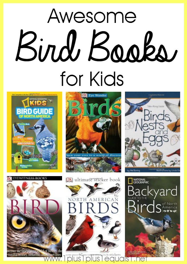 All About Bird Books For Children Kidskunstinfo