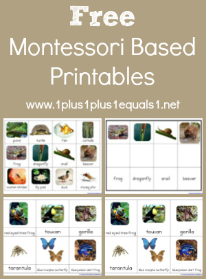 montessori worksheets | Cleverwraps